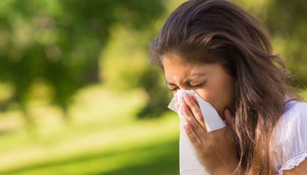 Allergi eller corona - Forskjellene på symptomer ved