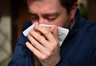 Forskjellene på symptomer ved pollenallergi og coronasmitte