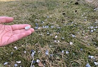 Hvem fjerner grusen i hagen din?