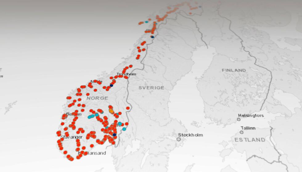 MANGE PROSJEKTER: I sommer skal rundt 1000 kilometer vei asfalteres. Akkurat hvor kan du sjekke i Vegvesenets kart. Skjermbilde: Pål Joakim Pollen
