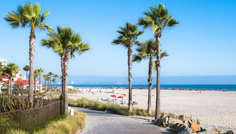 REISER LANGT: I 2020 ble det Norgesferie på Sveio-familien, vanligvis flyr de til USA for å besøke familie. Bildet viser en strand i San Diego. Foto: NTB / SHUTTERSTOCK