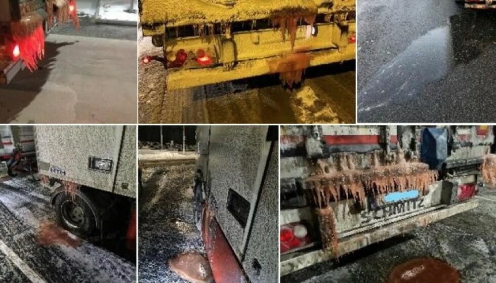 GRISERI: Dette er bilder som kontrollørene i Statens vegvesen har tatt av vogntog som lekker blodvann fra fisk. Nå krever de at fiskeindustrien ordner opp. Foto Statens vegvesen