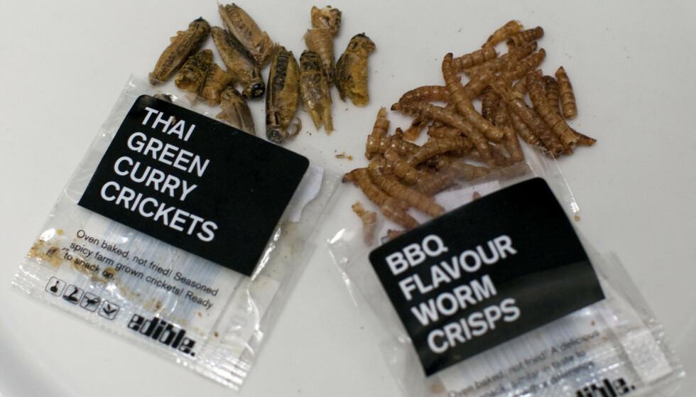 INSEKTSNACKS: Disse posene har tidligere blitt solgt på Selfridges i London. WHO mener at insekter kan bidra til å løse matmangelen i verden, og at insekter er en mer miljøvennlig kilde til proteiner. Foto: Jeff Blackler/REX/NTB
