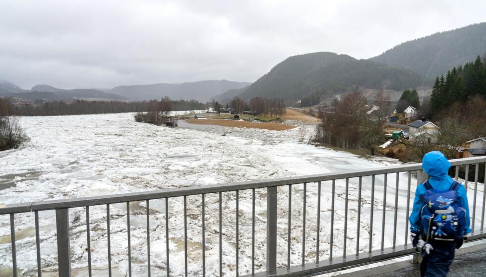 ISPROPP OG REGN: I januar ble det flom i Stjørdalselva på grunn av store nedbørsmengder og ispropp i elva. Foto: Gorm Kallestad / NTB