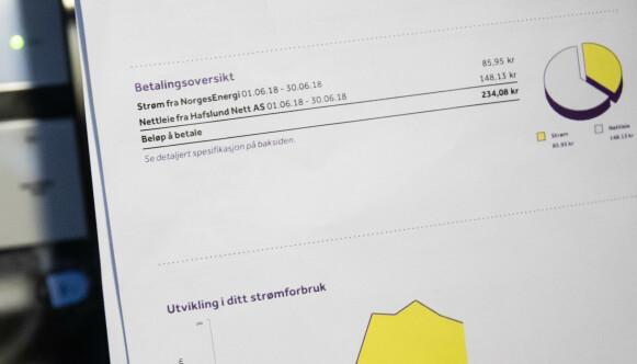 SAMMENSLÅTT PRIS: På denne strømregninga ser du at strømprisen ikke er delt opp med hvor mye du betaler i påslag og fastbeløp, men alt heller er slått sammen i én pris. Det gjør det vanskelig for deg å vite om du betaler riktig pris per kilowattime. Illustrasjonsfoto: NTB.