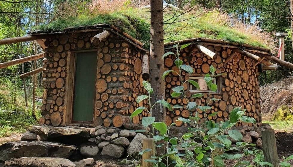 Vedhytta: Denne hytta finner du en drøy halvtimes kjøretur utenfor Oslo. Foto: airbnb