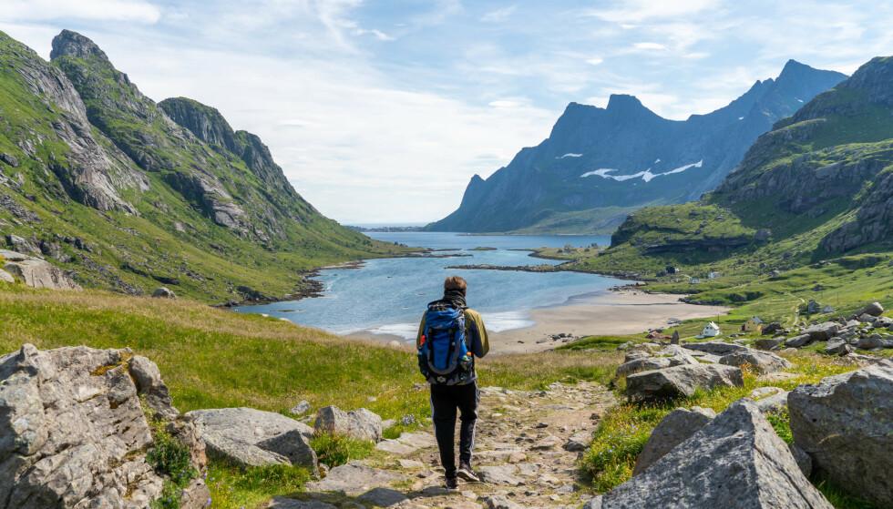 Gåtur fra Vindstad: Bunesstranda i Lofoten er omtalt som en av verdens vakreste strender, og gåturen dit er en severdighet i seg selv. Foto: Kathrine Salhus