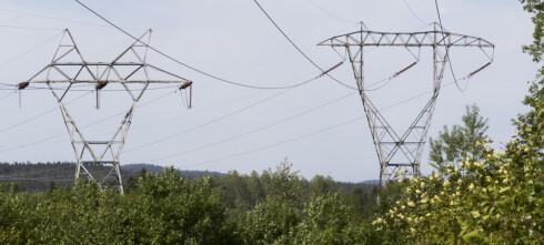Tidoblet strømpris i sommer!