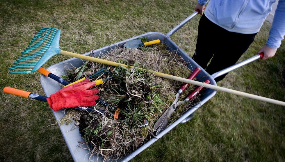 HAGEARBEID: Disse tingene kan du gjøre i hagen i juni, skriver Ekstrabladet.dk. Foto: Gorm Kallestad / NTB