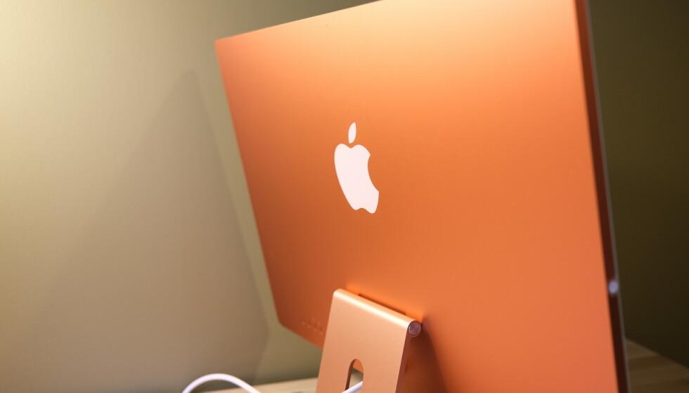 Baksiden er i en dyp oransjefarge, mens fronten er nærmere lakserosa. Foto: Martin Kynningsrud Størbu