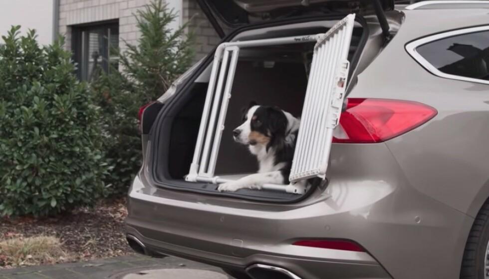 FORD VARSLER: Flere av Ford modeller får nå et system som varsler og ber føreren sjekke at barn eller dyr ikke er gjenglemt i baksetet når bilen stoppes. Foto: Ford