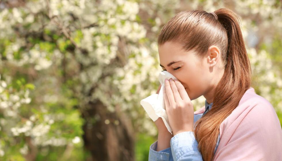 ALLERGIMEDISIN: Vi har gjennomført en prissjekk på tre ulike allergimedisiner. Foto: Africa Studio / Shutterstock / NTB