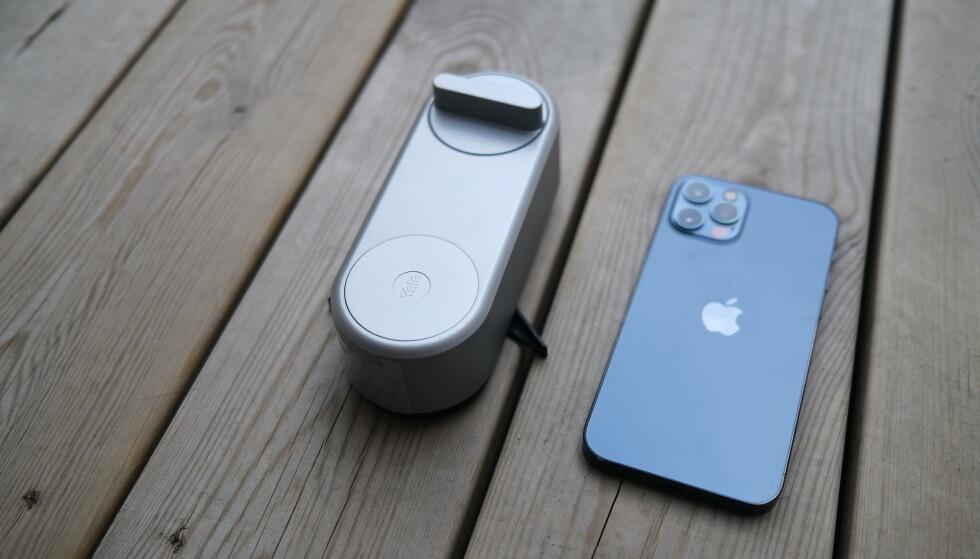 Yale Linus er mildt sagt stor. Her ved siden av en iPhone 12 Pro, slik at du enklere får et bilde av Linus' størrelse. Foto: Martin Kynningsrud Størbu