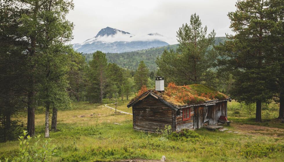 Fjellutsikt: Utsikt mot Snota fra Trollheimshytta i Trollheimen. Foto: Line Hårklau/DNT