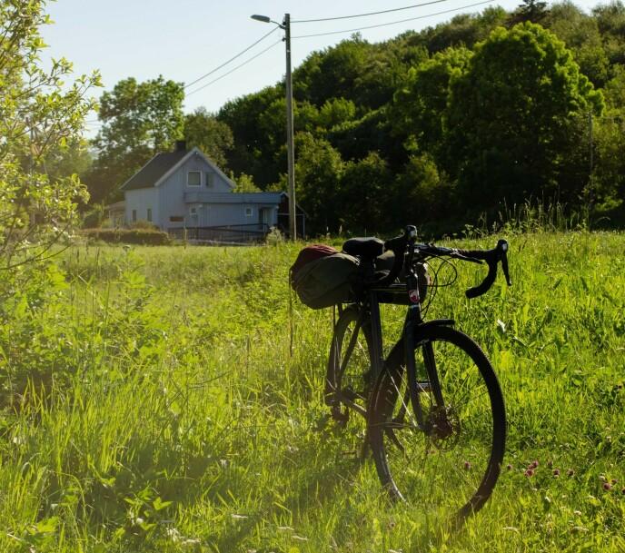TA SYKKELEN FATT: Det er ikke dumt å ha med seg sykkel opp til Brønnøysund og resten av Helgelandskysten. Du kan også leie sykkel flere steder. Foto: Alex Ruelas.