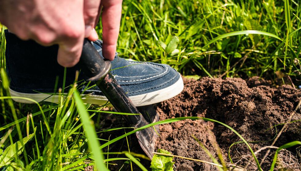 FORBEREDELSER: Ta med en liten spade hjemmefra om du skal være lenge ute på tur, og grav et hull du kan gjøre ditt fornødne i. Foto: Shutterstock/NTB.