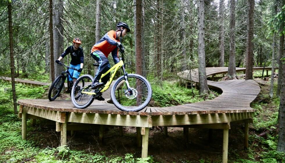 Sykkelbygda: Trysil har mange veldig flotte sykkelmuligheter. Foto: Odd Roar Lange/The Travel Inspector