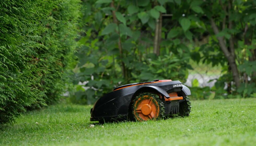 STJELES SOM ALDRI FØR: Forsikringsselskapet IF meldte om at antall stjålne robotklippere har skutt i været. Foto: If