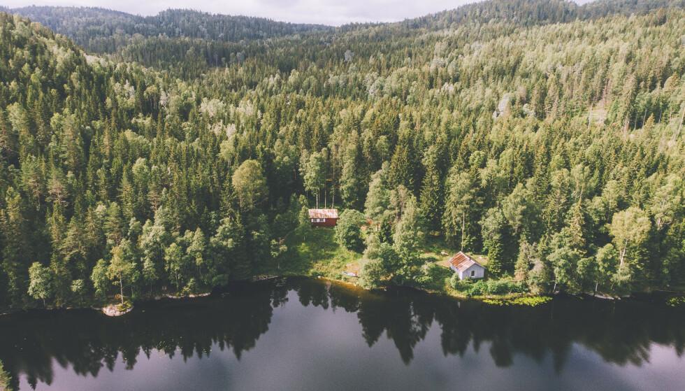 Vakkert i Østmarka: Røyrivannskoia. Foto: Marius Dalseg Sætre/DNT