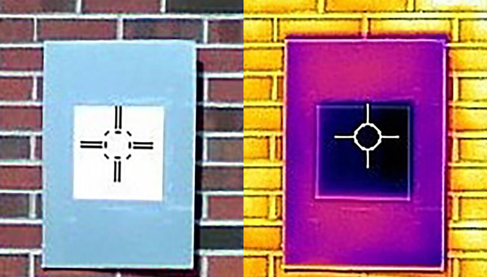 Et infrarødt kamera viser at den ultrahvite malingen (bildet til høyre) faktisk kan kjøle ned overflaten. Foto: Purdue University image/Joseph Peoples