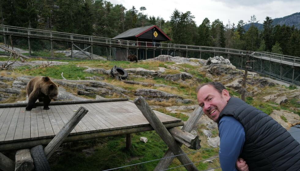 Går i hi: Bjørneparken i Flå i Hallingdalen gir deg muligheter til å komme nært på dyra. Og snart går bjørnen i hi, forteller parkdirektør Kees Oscar Ekeli. Foto: Odd Roar Lange/The Travel Inspector