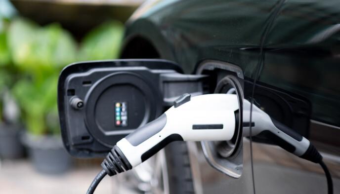 FYLLER PÅ: Klarkraft vil levere billig strøm uten skjulte kostnader. Foto: NTB