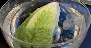 Image: Trikset som redder salaten