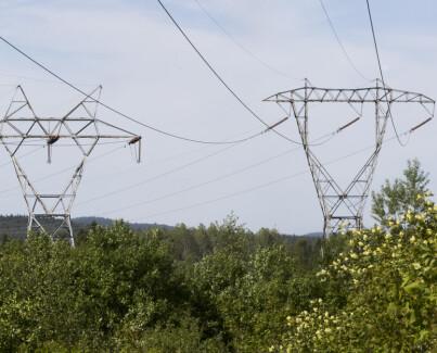 Image: Tidoblet strømpris i sommer