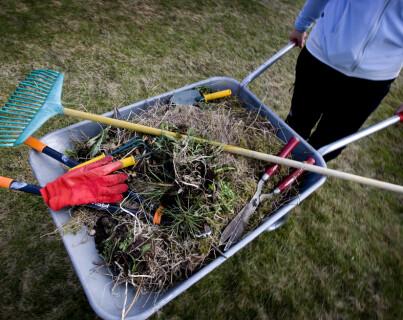 Image: Bør ordnes i hagen nå