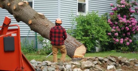 Image: Dette kan naboen kreve
